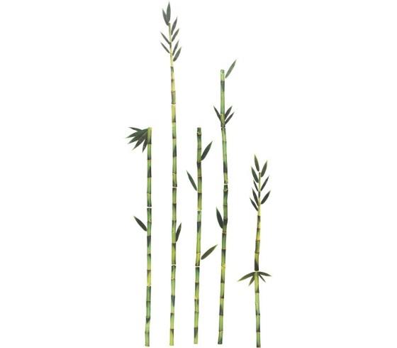 Dekosticker bambus bilder rahmen dekoration produkte for Bambus dekoration