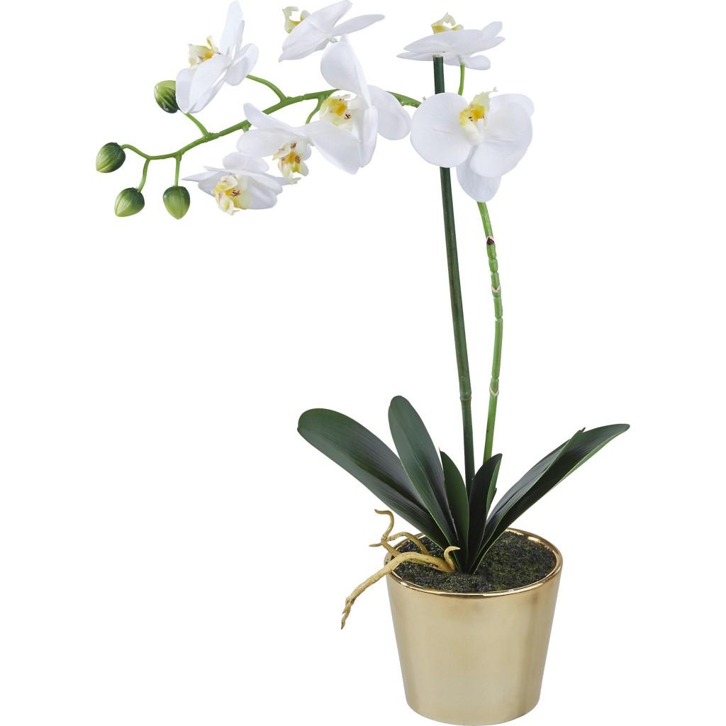 Kunstpflanze Cindarella in Weiß/Gold